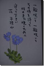 _DSC0010