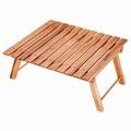 CSクラシックス FDパークテーブル<60>