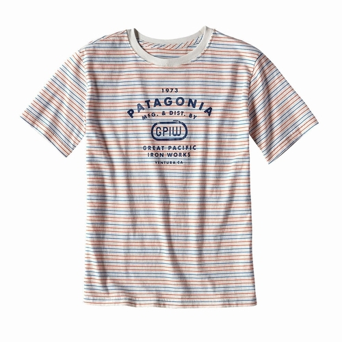 Boys Striped GPIW Biner Cotton T-Shirt